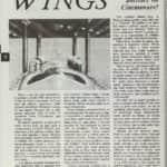 6- Wings