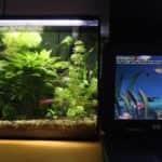 Dvě akvária - Hewlett Packard OmniBook XE3