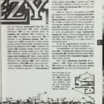 21- Dizzy 1 + návod a mapa str.2