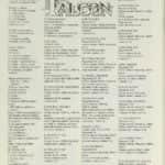 24- Falcon návod